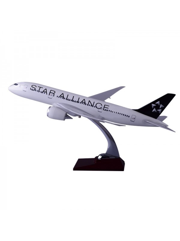 XL Star Alliance Boeing 787