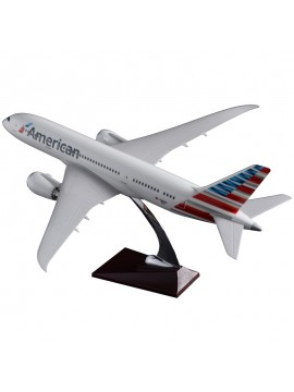 American Airlines Boeing 787